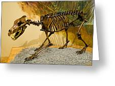Dire Wolf Fossil Greeting Card