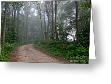 Dirt Path In Forest Woods With Mist Greeting Card