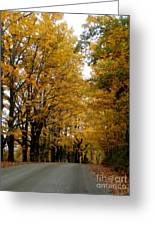 Dirt Road Colors Greeting Card by Steven Valkenberg
