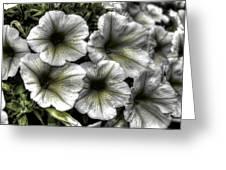 Dirty Flowers 2 Greeting Card