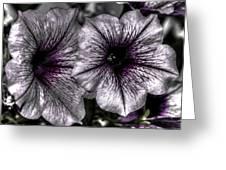 Dirty Flowers 4 Greeting Card