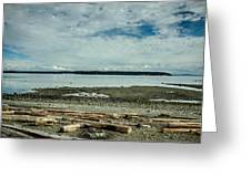 Low Tide Along The Discovery Passage Greeting Card