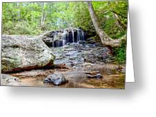 Disharoon Creek Falls Greeting Card by Bob Jackson