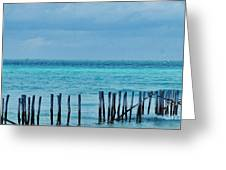 Distant Shore Greeting Card