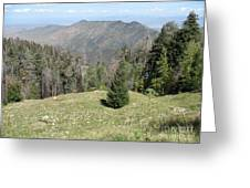 Distant View - Mount Lemmon Greeting Card