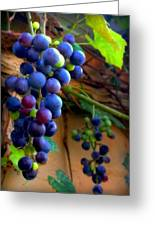 Divine Perfection Greeting Card by Karen Wiles