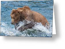 Diving For Salmon Greeting Card