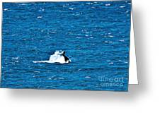 Diving I Greeting Card