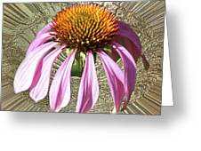 Divinity Gold - Echinacea Greeting Card