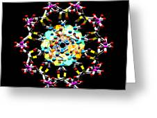 Dna 47 Greeting Card
