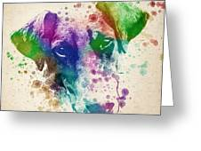 Doberman Splash Greeting Card