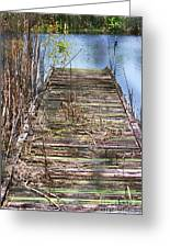 Dock In The Glades Greeting Card