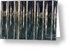 Dock Pilings Greeting Card