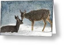Doe A Deer Greeting Card