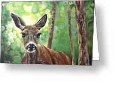 Doe Eyes Greeting Card