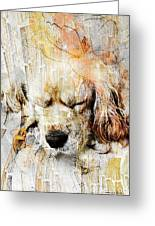 Dog 391-08-13 Marucii Greeting Card