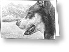 Dog And Mountains Pencil Portrait Greeting Card