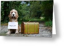 Dog And Suitcase Greeting Card