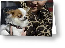 Dog And True Friendship 2 Greeting Card