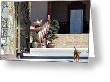 Dog At Temple Greeting Card
