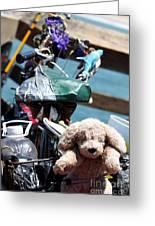 Dog Bike Greeting Card
