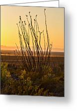 Dog Canyon Sunset Greeting Card