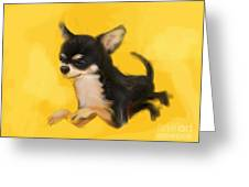 Dog Chihuahua Yellow Splash Greeting Card