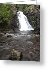 Dog Creek Falls Greeting Card