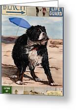 Dog Days Of Summer V2 Greeting Card