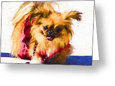 Dog Daze 3 Greeting Card