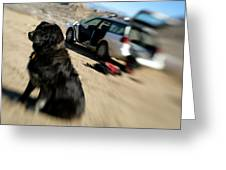 Dog In Front Of A Climbers Car Greeting Card