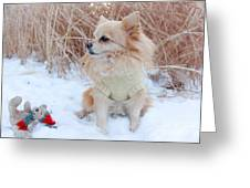 Dog Playing In Snow Greeting Card