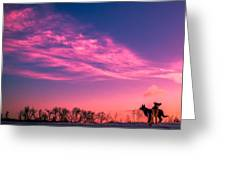 Dog Sunrise 2 Greeting Card