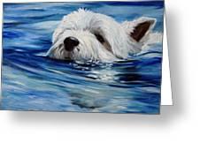 Doggie Paddle Greeting Card