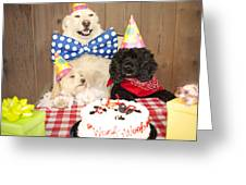 Doggy Birthday Party Greeting Card by Jan Tyler