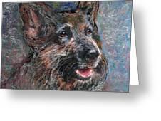 Doggy Dreams Greeting Card