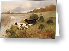 Dogs On The Scent Greeting Card
