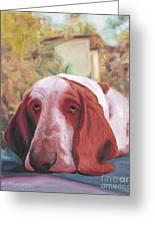 Dog's Portrait No 1 Greeting Card