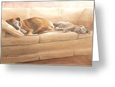 Dogs Sleeping On Couch Watercolor Portrait Greeting Card