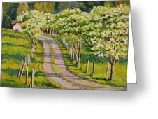Dogwood Allee Greeting Card