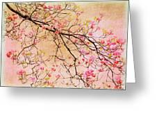 Dogwood  Canvas Greeting Card