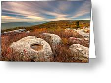 Dolly Sods Wilderness D30019870 Greeting Card