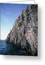 Dolomite Cliff With Guillemot Colony Greeting Card
