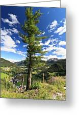 Dolomites - Tree Over The Valley Greeting Card