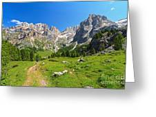 Dolomiti - Contrin Valley Greeting Card