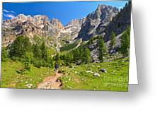Dolomiti -landscape In Contrin Valley Greeting Card