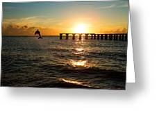 Dolphin Jumping Out Of The Sea In Florida Greeting Card by Fizzy Image