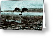 Dolphin Pair-in The Air Greeting Card