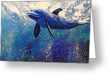 Dolphin Play Greeting Card