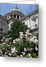 Dome Of St Paul's Greeting Card by Stephen Norris